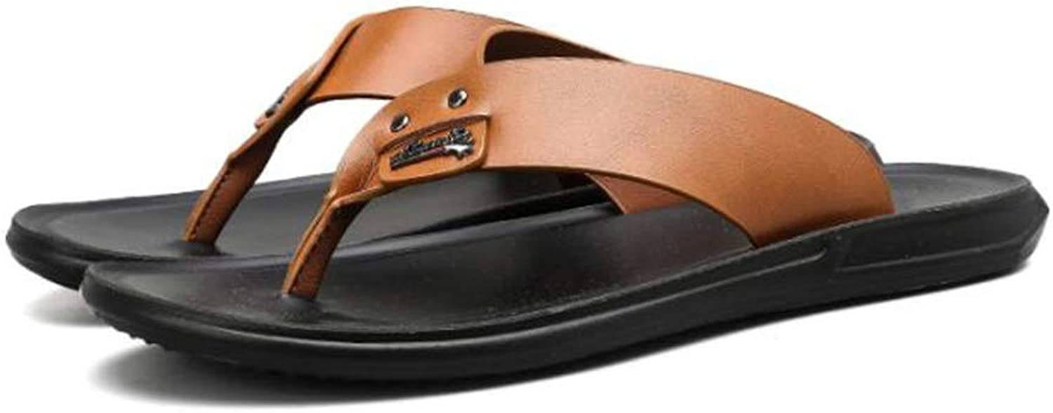 HIAO sandals Sandals shoes Pu Surface Rubber Sole Boy Daily Outdoor Travel Non-slip Beach Black Brown Splice Soft Refreshing Cool (color   Brown, Size   45)
