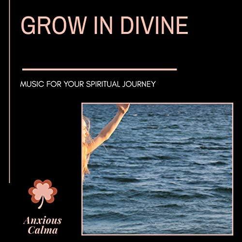 Zen Town, Platonic Melody, Binural Healers, Power Diggers, RauDrAE, Relax & Rejoice, Theta Sleepers, Ultra Healing, Dr. Bendict Nervo, Dr. Yoga, Dr. Krazy Windsor, Ambient 11, Mystical Guide & ArAv NATHA