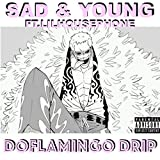 Doflamingo Drip (feat. Lil Housephone) [Explicit]