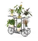CUYY Planta de Maceta Plantador Hierbas Soportes Florales Uso Interior y Exterior...