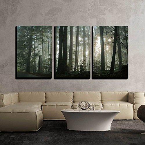 wall26 - Foggy Forest - Canvas Art Wall Art - 16'x24'x3...