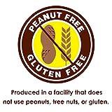 Dubble Bubble - Assorted Flavors,ReusableTub (300 Count)Peanut Free, Gluten Free