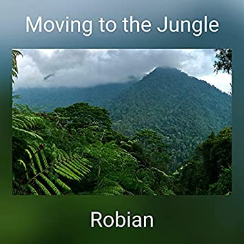 Moving to the Jungle
