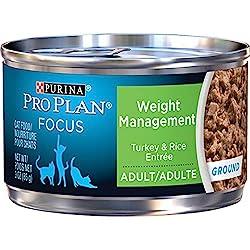 Menu plans for low glycemic diet photo 6