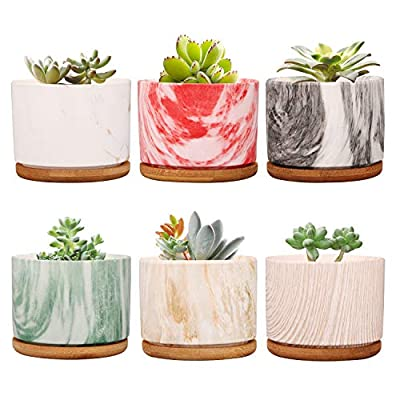 Plant Pot ,Brajttt Ceramic Succulent Pot Planter Flower Pots with Drainage,Small Planter Pots for Mini Plant Ceramic Flowing Glaze Base Serial Set with Bamboo Tray(Set of 6)