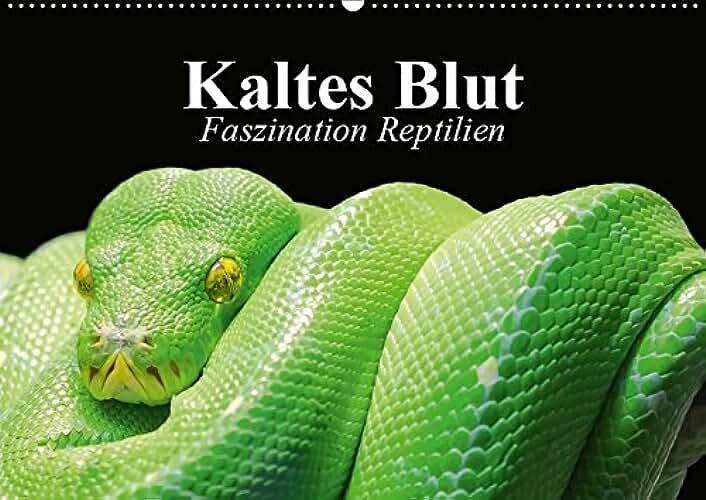 Kaltes Blut. Faszination Reptilien (Wandkalender 2019 DIN A2 quer): Urzeitliche Anpassungskünstler und schützenswerte Wesen (Monatskalender, 14 Seiten ) (CALVENDO Tiere)
