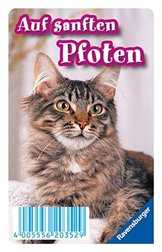 Katzen: Tier-Quartett