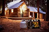 Photo #10: Propane Portable Generator made by Champion - 3400-Watt with Electric Start