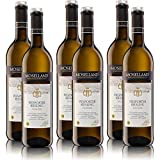 6 Flaschen Moselland Piesporter Riesling Mosel, feinherb, sortenreines Weissweinpaket (6x0,75l)