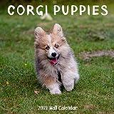 Corgi Puppy 2021 Wall Calendar: Corgi Puppy Calendar 2021, 18 Months