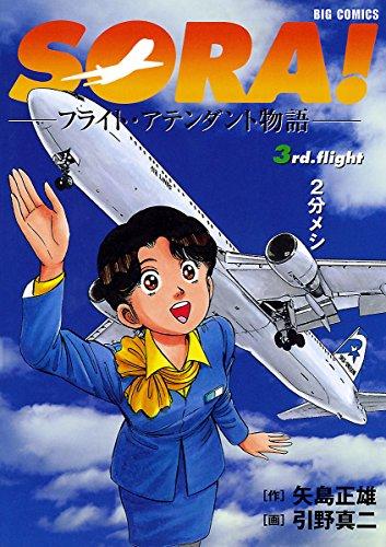 SORA!フライト・アテンダント物語(3) (ビッグコミックス)