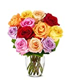 Flowers - One Dozen Rainbow Roses (Free Vase Included) - Delivery before Mother's Day Guaranteed