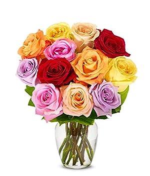 Flowers - One Dozen Rainbow Roses  Free Vase Included