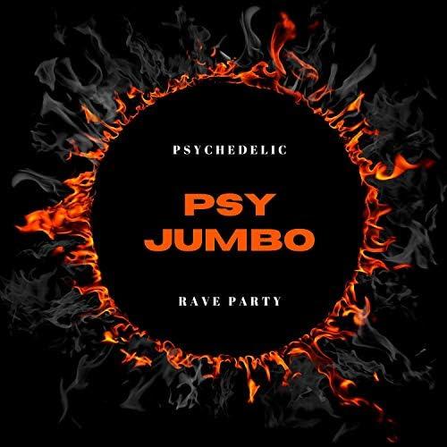 Psy BURTT, mavn, Dj Mula, Zyprexa, Graf x, Tonx DUA, Psychic Sage, Social Animal, Sphere X, Xander, Mumbai Trance, Cosmic Nagga, Hipnotic, Spiritual Mudra, Cosmica, Moksha & Cosmodalia