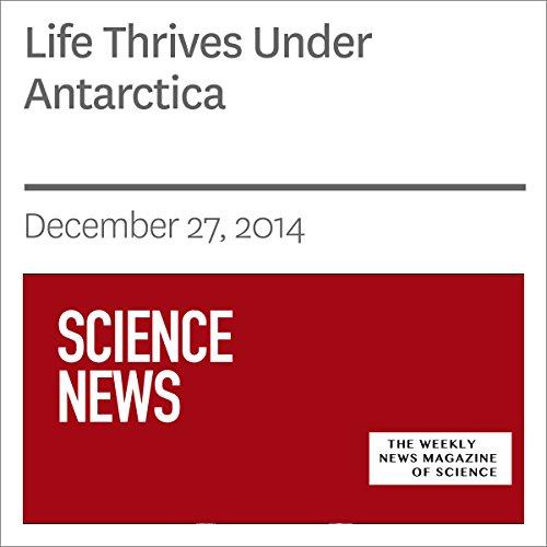 Life Thrives Under Antarctica audiobook cover art