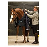 Horseware Rambo Duo Liner Unterdecke Winter 100/ 200/ 300/ 400 g - Größe wählbar (140, 200g.)