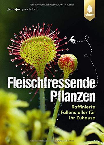 Fleischfressende Pflanzen: Raffinierte Fallensteller für Ihr Zuhause