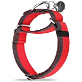 Dazzber Martingale Collar -4cm Width Extra Strong Nylon Dog Collar, No Pull Heavy Duty Dog Collar with 2-Color Stripe for Medium to Xlarge Dogs (Medio, Rojo & Gris)