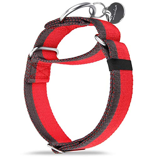Martingale Collar 1.5 Inch Wide Extra Strong Nylon Dog Collar, No Pull Heavy Duty Dog Collar with 2-Color Stripe for Medium to XLarge Dogs (Large, 1 1/2 Inch Wide, Red & Grey)