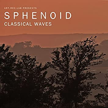 Classical Waves