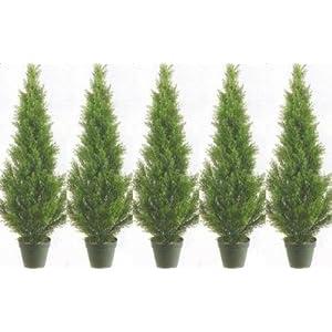 Silk Flower Arrangements Five 3 Foot Artificial Cedar Topiary Trees Potted Indoor or Outdoor