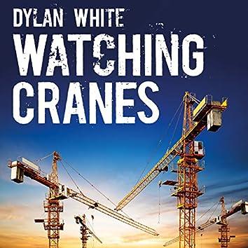Watching Cranes
