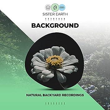! ! ! ! ! ! ! ! Background Natural Backyard Recordings ! ! ! ! ! ! ! !