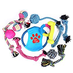 Best Gifts For Dog Lovers - Presents To Suit Any Budget or