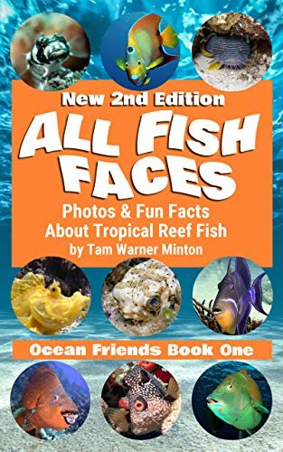 All Fish Faces: Photos and Fun Facts about Tropical Reef Fish (Ocean Friends Book 1) (English Edition)