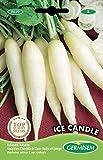 Germisem Ice Candle Semillas de Rábano 8 g