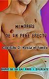 Memorias de un pene erecto 2: Hasta el fondo