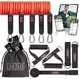 PULSUS fit Fitnessband Resistance Bands Set mit Übungsvideo App - Pro Expander Bänderset: 5 Widerstandsbänder, Griffe, Fußschlaufen, Türanker & Tragetasche | Sportbänder
