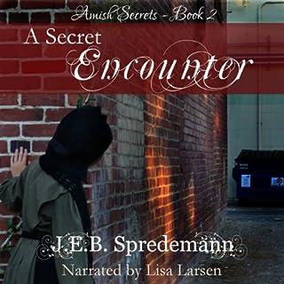 A Secret Encounter audiobook cover art