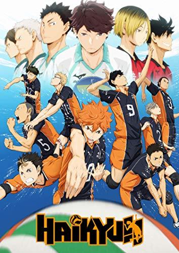 Haikyuu - Poster deportivo de Volley para la temporada 4, 28 x 43 cm