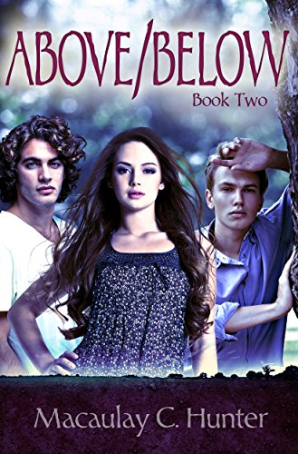 Above/Below (Earth/Sky Trilogy Book 2) (English Edition)