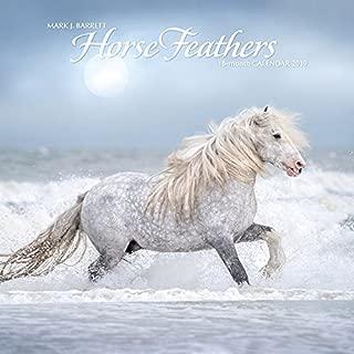 2019 draft horse calendar