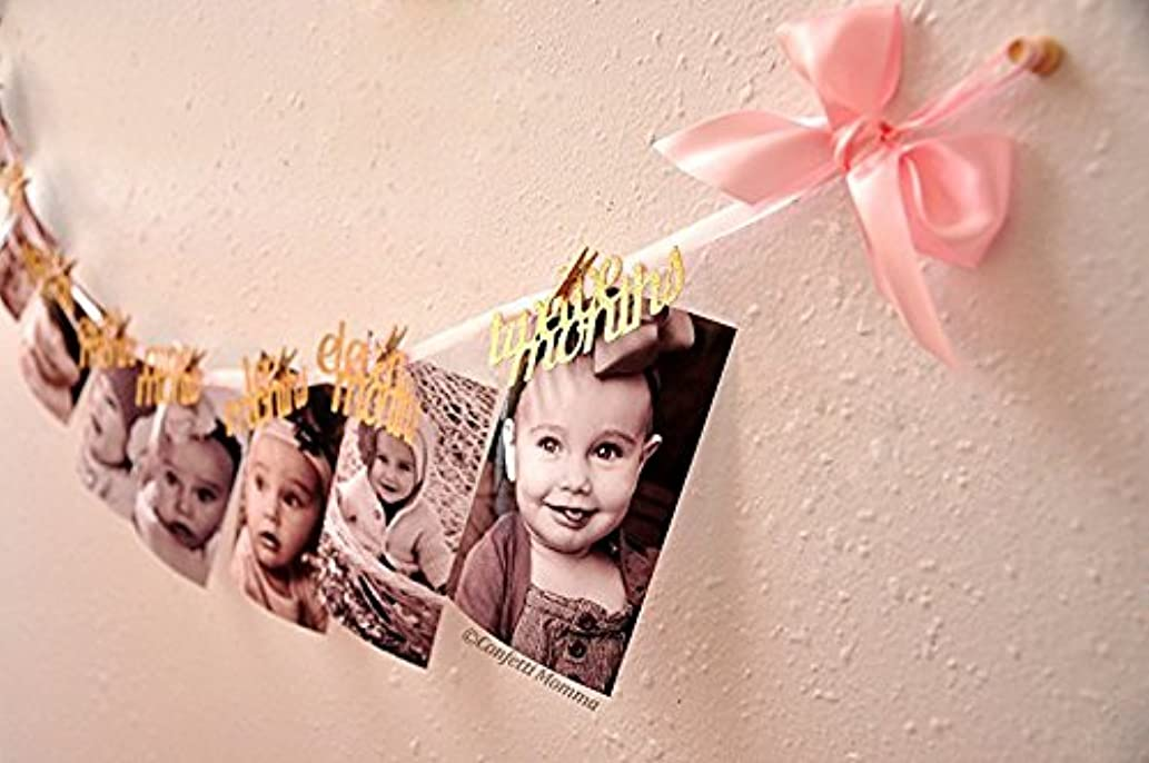 Newborn To 12 Months Photo Banner,Fashionclubs Baby Growth Record Bunting Garland First Birthday Glitter Party Decorations,Baby Shower Photography Garland (Style Two)