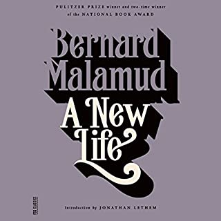 A New Life: A Novel audiobook cover art