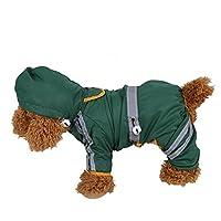 Manteau de pluie réfléchissant pour animal domestique avec capuche pour chien et chat Vert Taille XXL