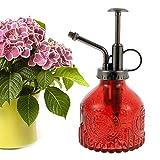 200 ml Regadera de cristal, pulverizador de cristal, botella retro transparente, botella de spray para regar, regadera pequeña con bomba para flores, plantas, jardín vino rojo)