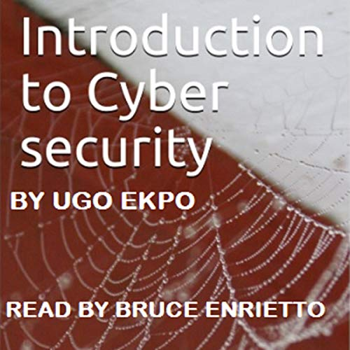 Introduction to Cyber Security: Fundamentals cover art