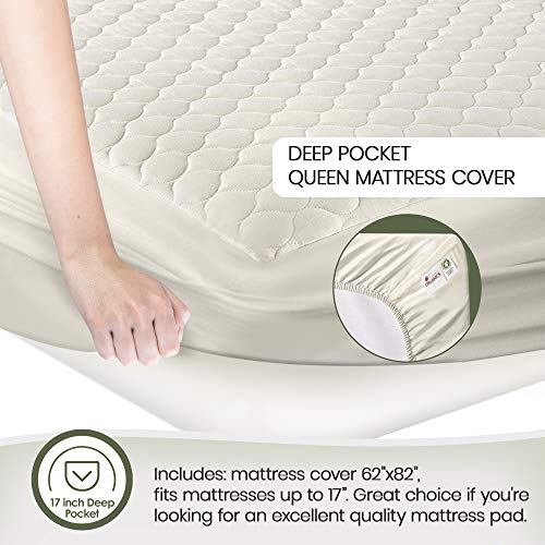 "Whisper Organics, 100% Organic Mattress Protector - Quilted Fitted Mattress Pad Cover, GOTS Certified Breathable Mattress Protector - Ivory Color, 17"" Deep Pocket (Queen Size Bed)"