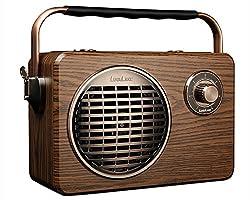 LuguLake Retro Review Best Vintage Stereo Speaker