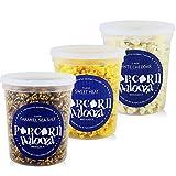 Popcorn Palooza Gourmet Popcorn Variety Pack Trio - Flavored Popcorn Individual Snack Packs Popcorn Gift (Caramel/Sweet Heat/Cheddar)