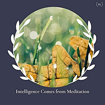 Intelligence Comes From Meditation