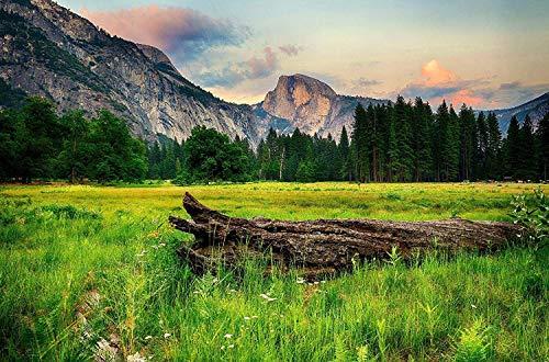 Gjdgj Rompecabezas 1000 Piezas Mountain Meadow Adult