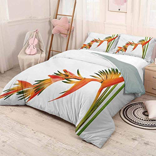 HELLOLEON Floral Pure Bedding Hotel Luxury Bed Linen Exotic Tropical Flowers on Branch Colorful Nature Jungle Garden Theme Image Print Polyester - Soft and Breathable (Queen) Green Orange