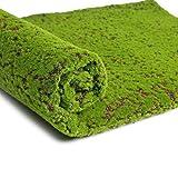 BESPORTBLE Moosmatte artificial musgo alfombra alfombra de césped artificial micro paisaje hadas jardín casa casa de muñecas alfombra verde terraza punto marrón acuario miniatura decoración