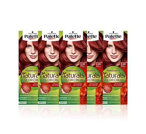 Schwarzkopf Palette Naturals - Coloración Permanente Tono 6.88 Rojo Intenso, 550 gr (Pack de 5)