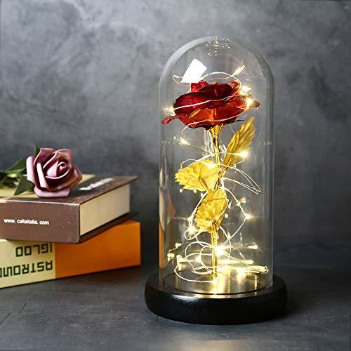 TINYOUTH Rot Rose mit Glas Lampenschirm, Künstliche Rose Im Glas, 2m/6.6ft 20 LED Streifen Licht Schöne und Das Biest Rose, AAA Batteriebetrieben für Hochzeit Valentinstag Weihnachten